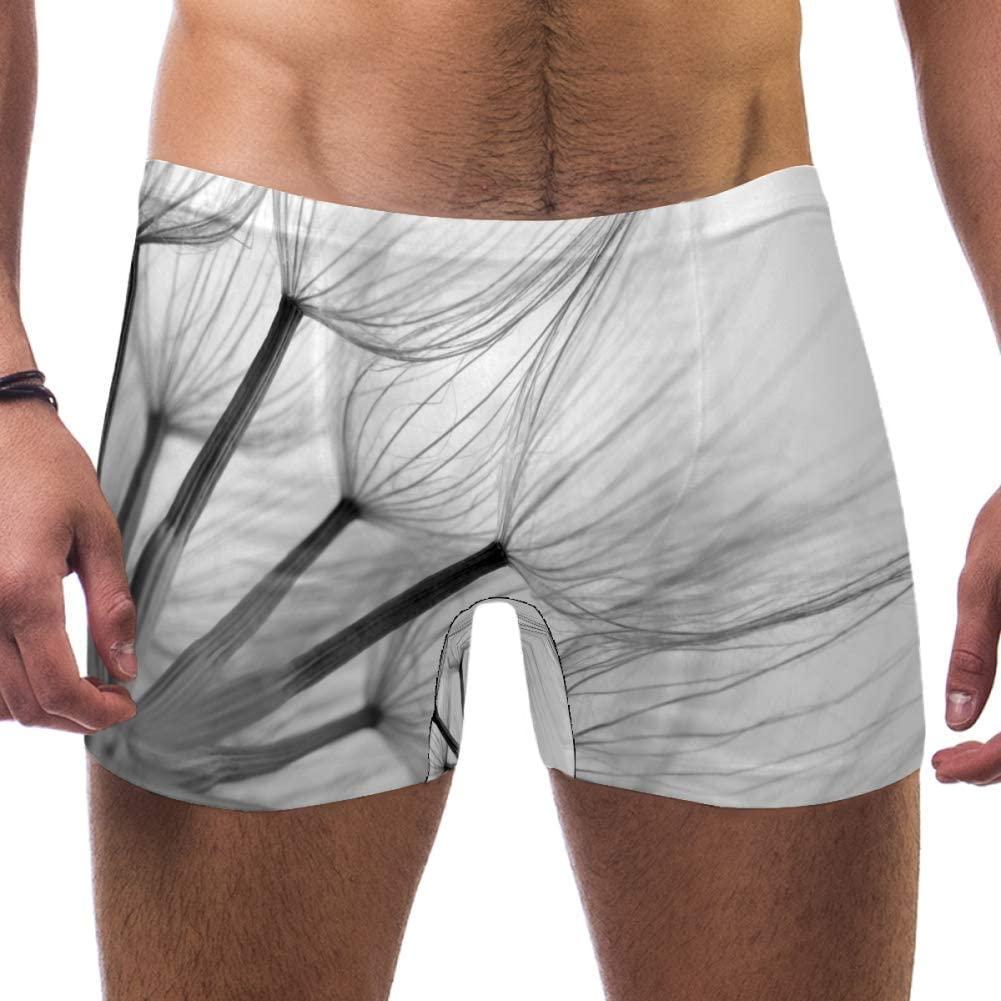 Mens Extreme Close Dandelion Blackwhite Shallow Swimsuits Swim Trunks Shorts Athletic Swimwear Boxer Briefs Boardshorts