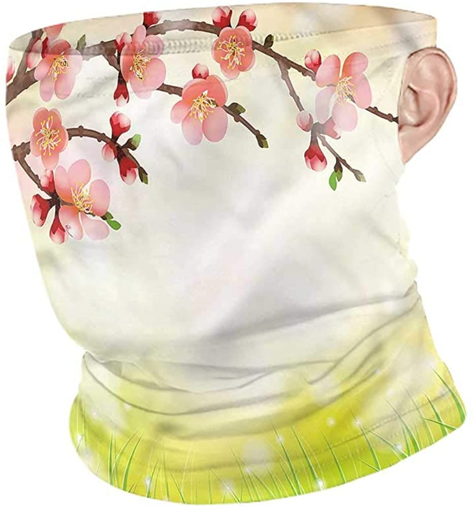 Neck Gaiters Japanese,Cherry Blossoms Nature Facemask Seamless for Outdoor
