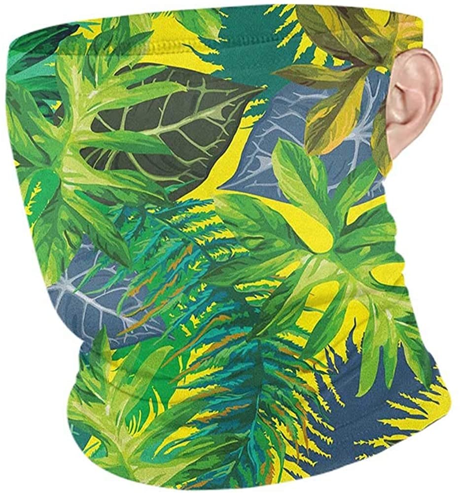 Neck Warmer Cooling Plant Botany Themed Drawing Depicting Exotic Leaves in Tropical Environment Hawaiian Vibes,Neck Gaiter Tube Headwear Bandana Multicolor 10 x 12 Inch