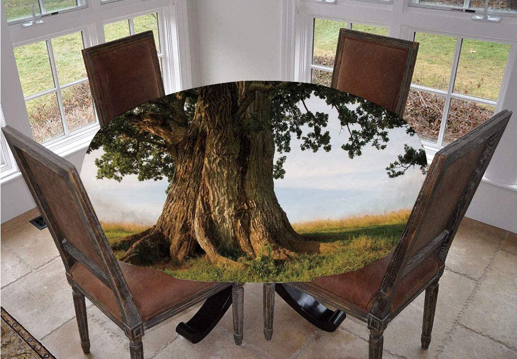 Angel Bags Nature Round Tablecloth,Majestic Oak Tree on Grass Estonia Northern Europe Rural in Summer Landscape Polyester Table Cover,36 Inch,for Spring/Summer/Party/Picnic Cocoa Fern Green