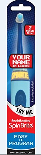 Brush Buddies 00399-24 Spin Brite Toothbrush (Pack of 24)
