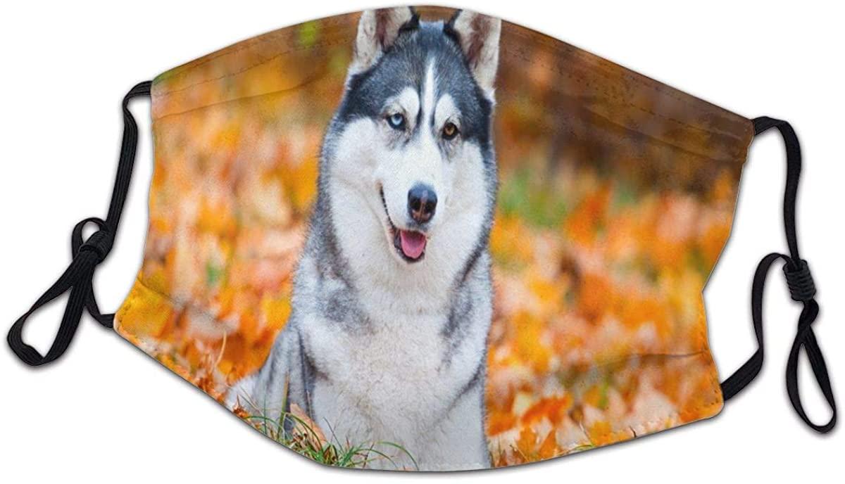 Siberian Husky in Autumn Park Washable Reusable Kids Dust Cover Scarf Bandana for Boys Girls