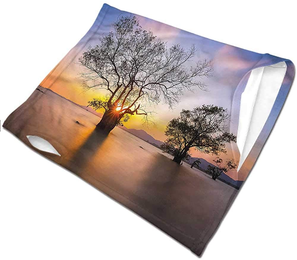 Face Scarf Coastal,Autumn Trees View Habitat Cold Weather Face Cover