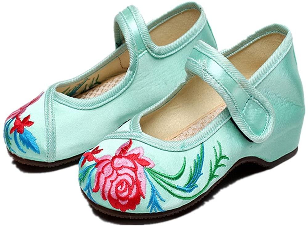 Tianrui Crown Girl's Embroidery Flat Ballet Shoes Kid's Cute Mary-Jane Dance Shoe Flat Sandal Shoe