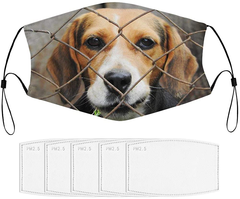 Roupaze Children Face Masks Beagle, Dog, Imprisoned, Kennel Windproof Face Mouth Cover Balaclavas for Kids with 5 Filter