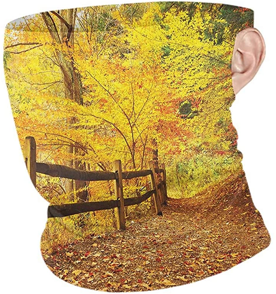 Headband Cooling Landscape Autumn Season Fall Trees Leaves on Pathway to Forest with Fence Photo,for Running, Skiing, Snowboarding Ginger Yellow Marigold 10 x 12 Inch