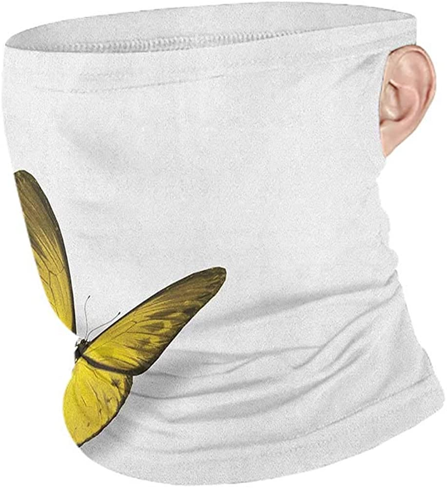 Balaclavas Cooling Yellow Romantic Butterfly with Yellow Wings of The Spring Coming of The Summer Sign,12 in 1 Multifunctional Headwear Yellow Green Brown 10 x 12 Inch