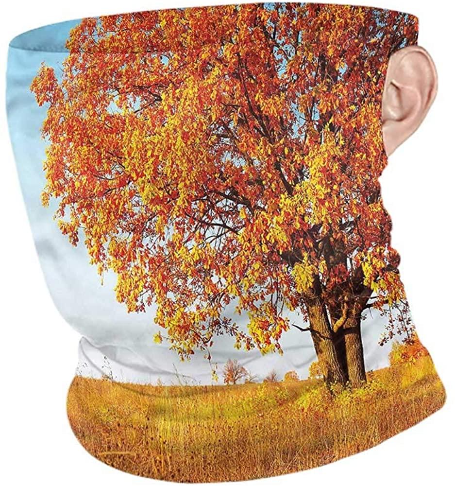 VIVIOTendance Headwear Fall,Lonely and Ancient Oak Headband Neck Gaiter