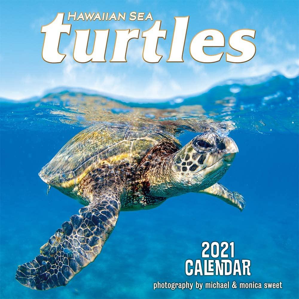 Pacifica Island Art Hawaii 2021 Wall Calendar Hawaiian Sea Turtles by Michael & Monica Sweet