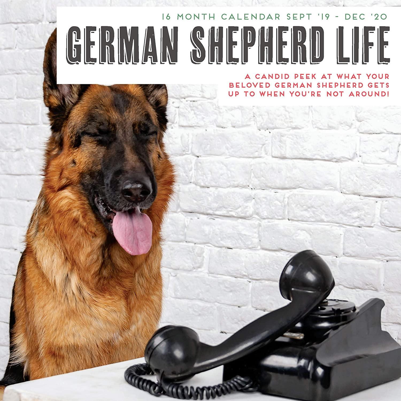German Shepherd Life 2020 Calendar