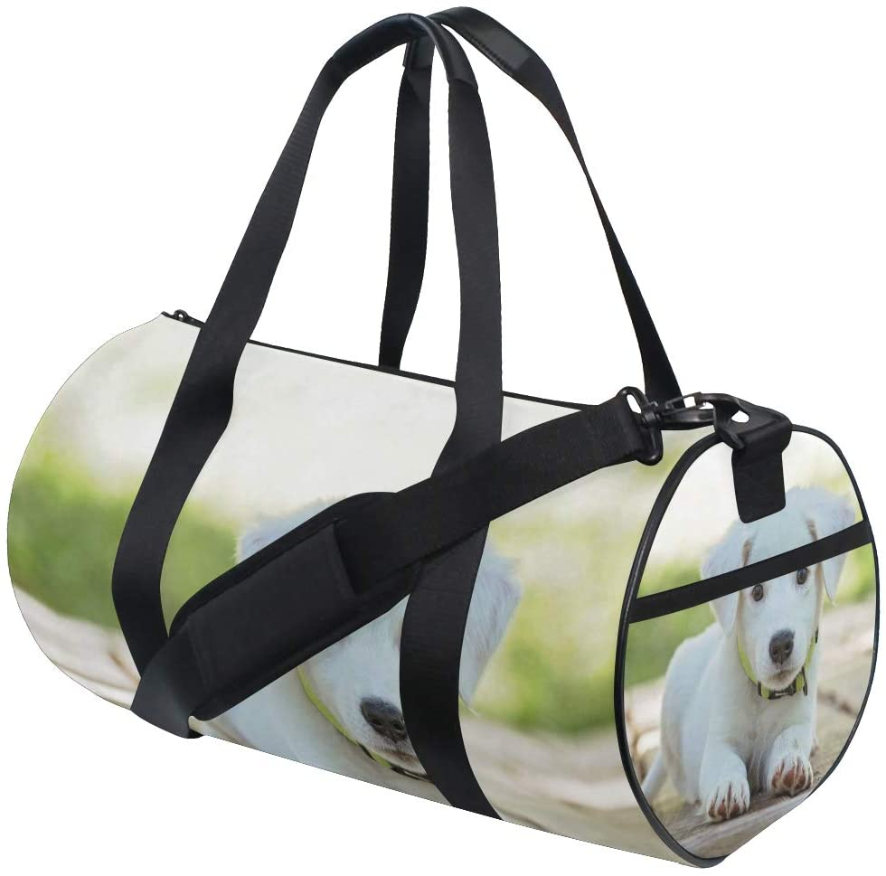 Brighter Puppy Fitness Sports Bags Gym Bag Travel Duffel Bag for Mens and Womens