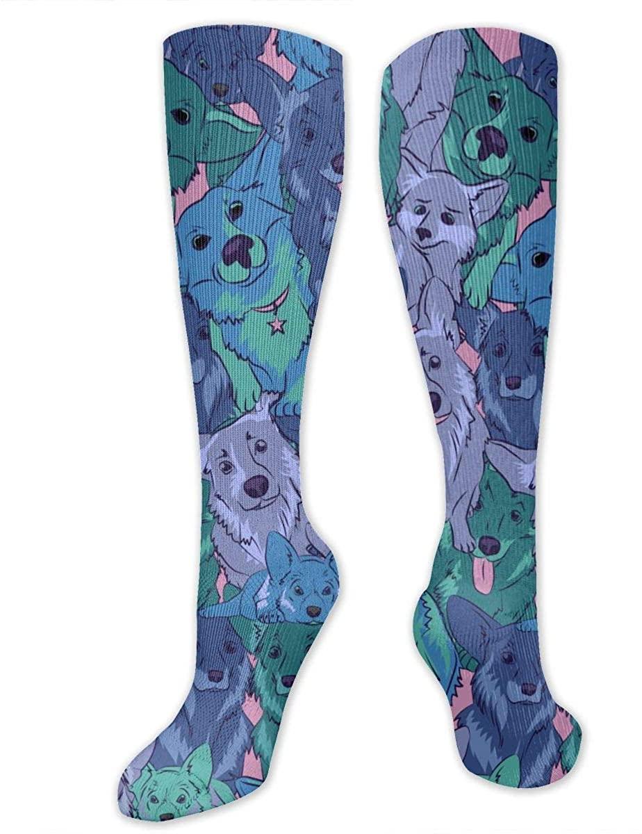 Cute Welsh Corgi Print Athletic Socks Thigh Stockings Over Knee Leg High Socks