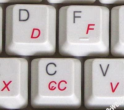 Portuguese-Brazil Keyboard Label with RED Lettering Transparent for Computer LAPTOPS Desktop