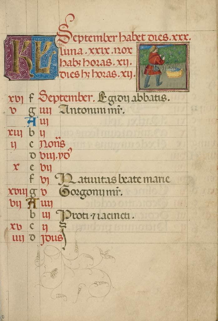 Manuscripts Print - September Calendar Page; Harvesting Grapes - 24