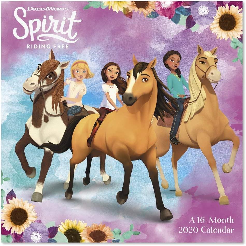 2020 Spirit: Riding Free Wall Calendar (DDW3212820)