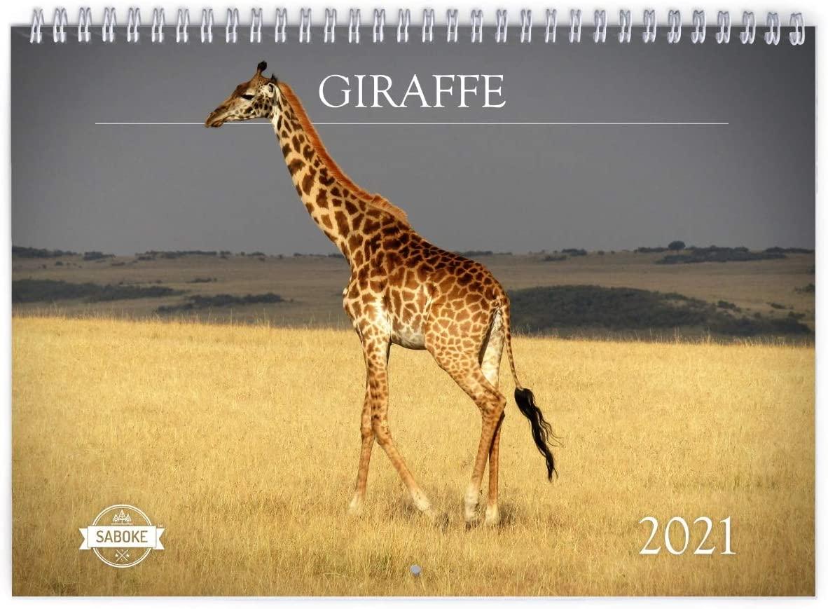 Giraffe 2021 Wall Calendar