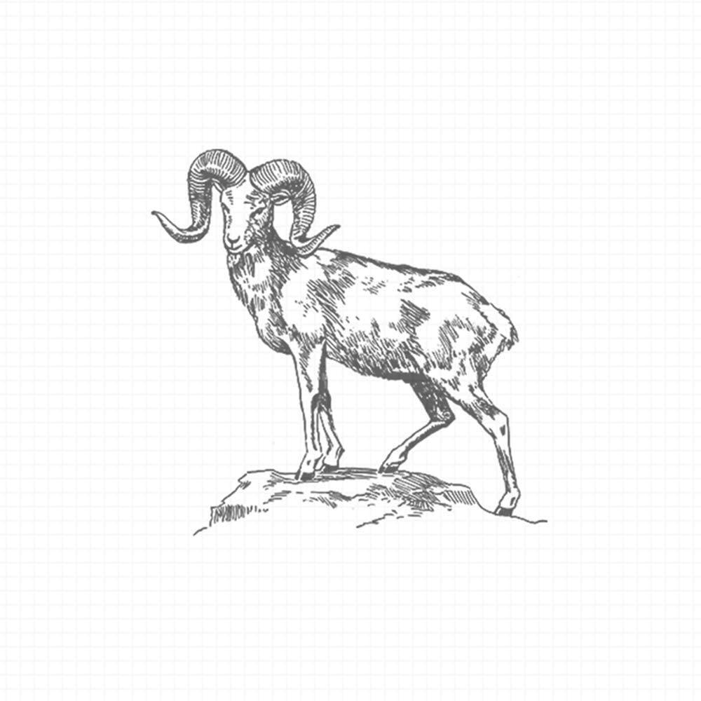 Argali, pre-Inked Rubber Stamp (#440171-30BE)