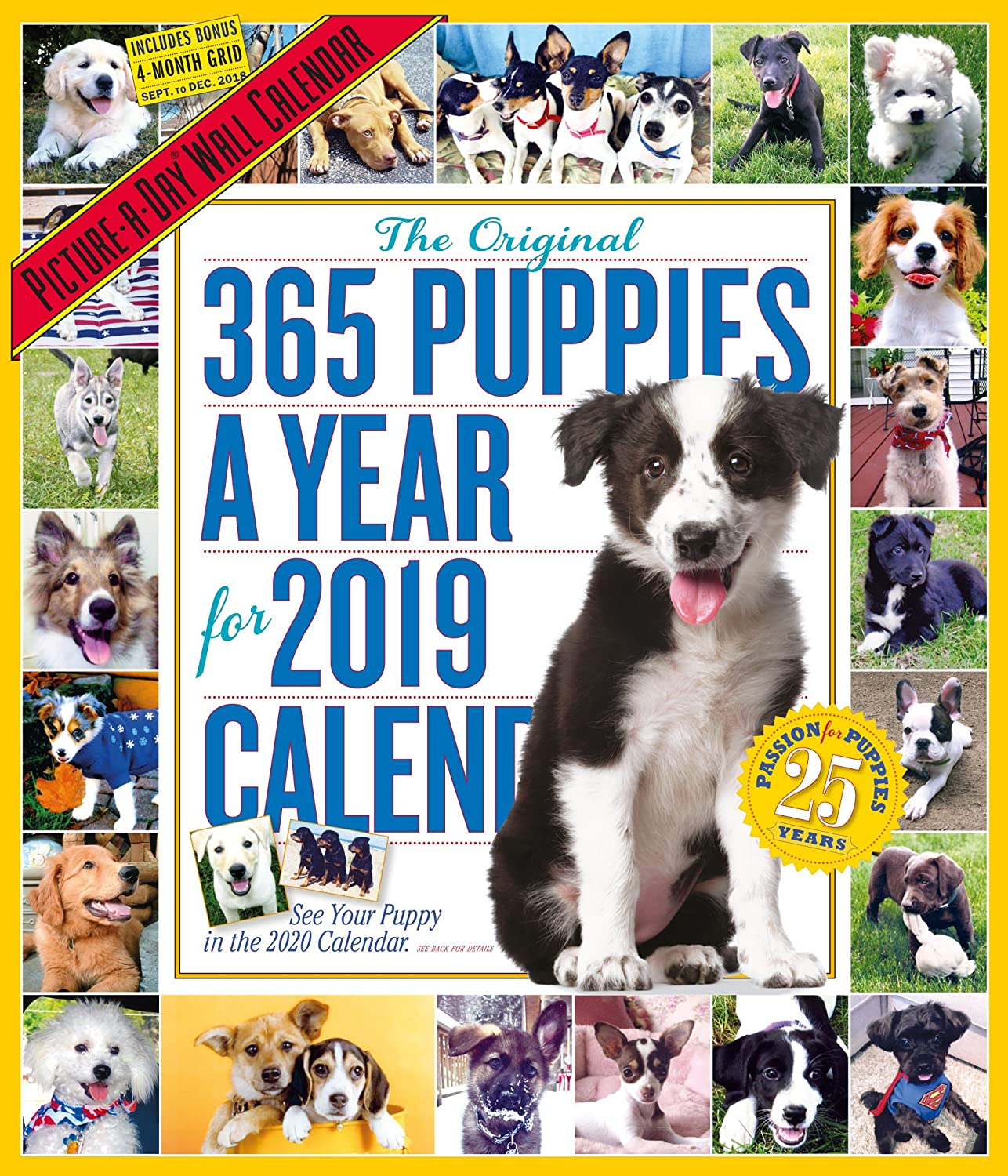 365 Puppies-A-Year Picture-A-Day Wall Calendar 2019 [12