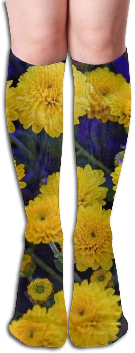 Yellow Chrysanthemum,Design Elastic Blend Long Socks Compression Knee High Socks (50cm) for Sports