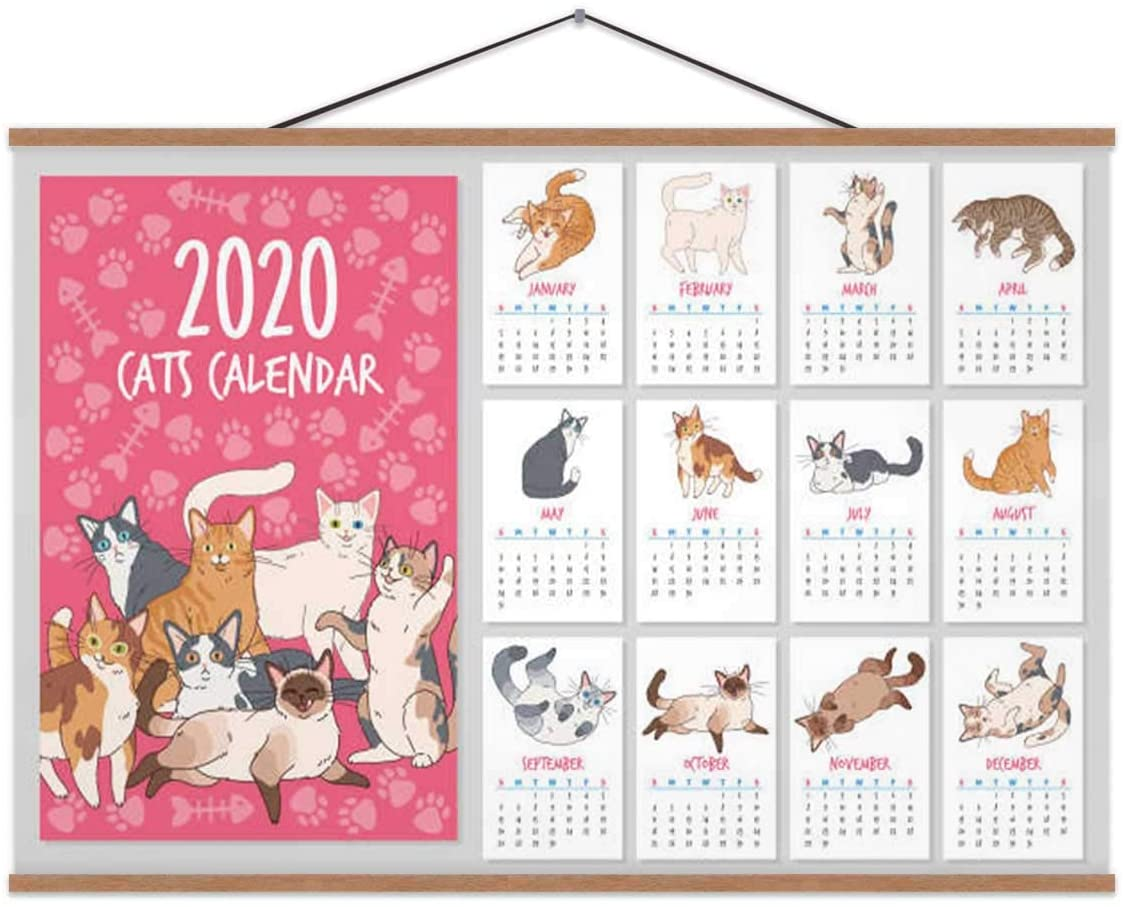 Hoveniacis Cat Calendar.2020 Year Planner with Cute Cats Posters Funny Kitten Hand Drawn Design Set 2020 for Wall 24x12in