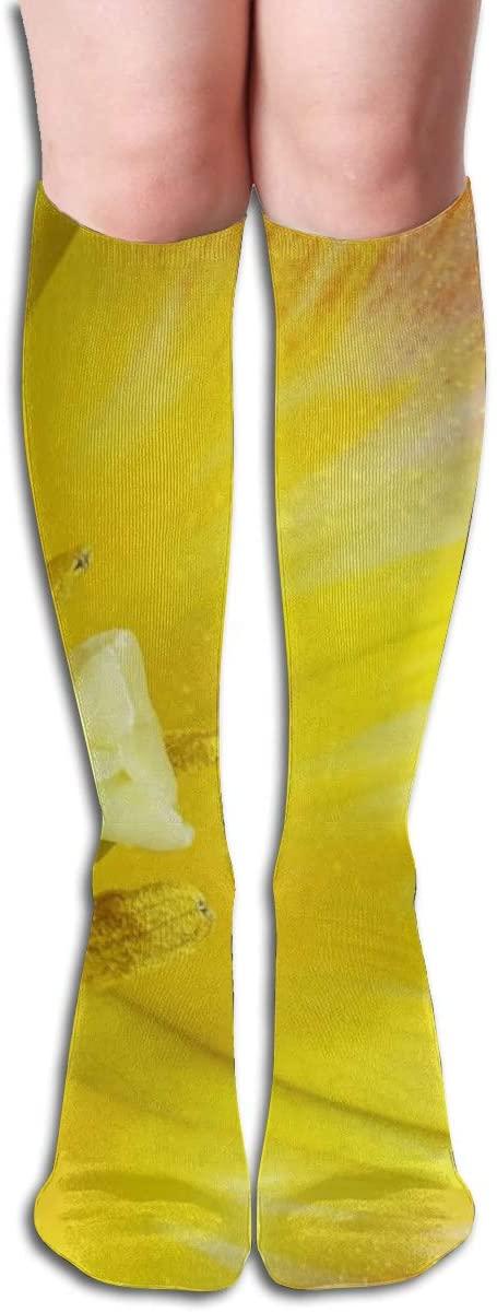 Tulip Cup Stamp,Design Elastic Blend Long Socks Compression Knee High Socks (50cm) for Sports