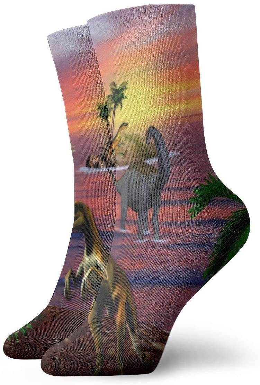 Crew Socks Tropical Dinos Sunsets Animals Dinosaurs Inspiring Womens Dress Stocking Decoration Sock Clearance for Man