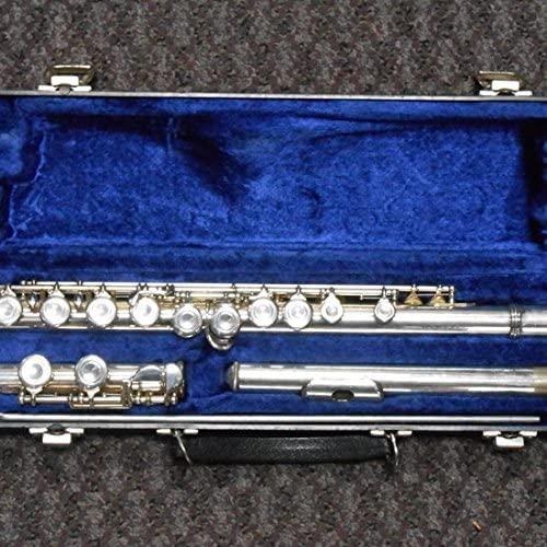 Flute Selmer 1206 S