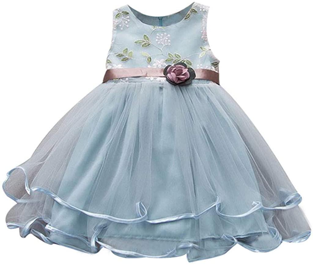 ZEFOTIM Toddler Baby Kids Girls Flowers Tulle Dress Princess Dresses Party Dress Clothes 6-24M 2-3Y