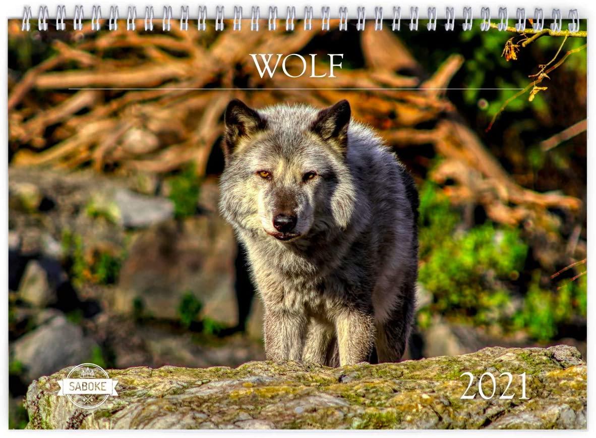 Wolf 2021 Wall Calendar