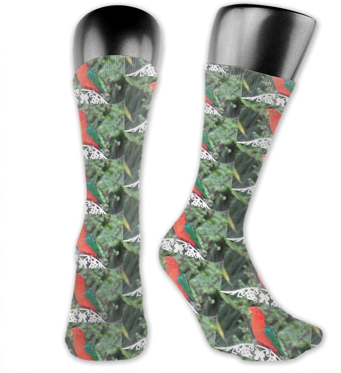 Australian Parrot Unisex Outdoor Long Socks Sport Athletic Crew Socks Stockings
