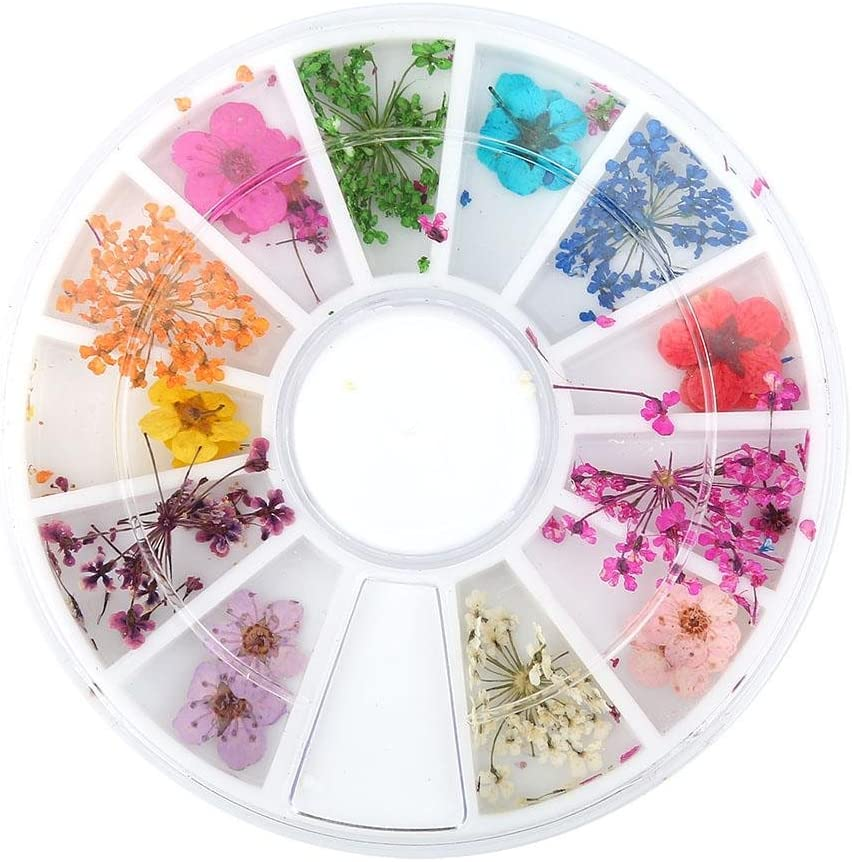 Nail Dried Flowers,12 Types Colorful Natural Real Dry Flowers Set Nail Decoration Manicure Arts with Wheel Box for Decorating Phone,Hair, Glasses,Nail,etc