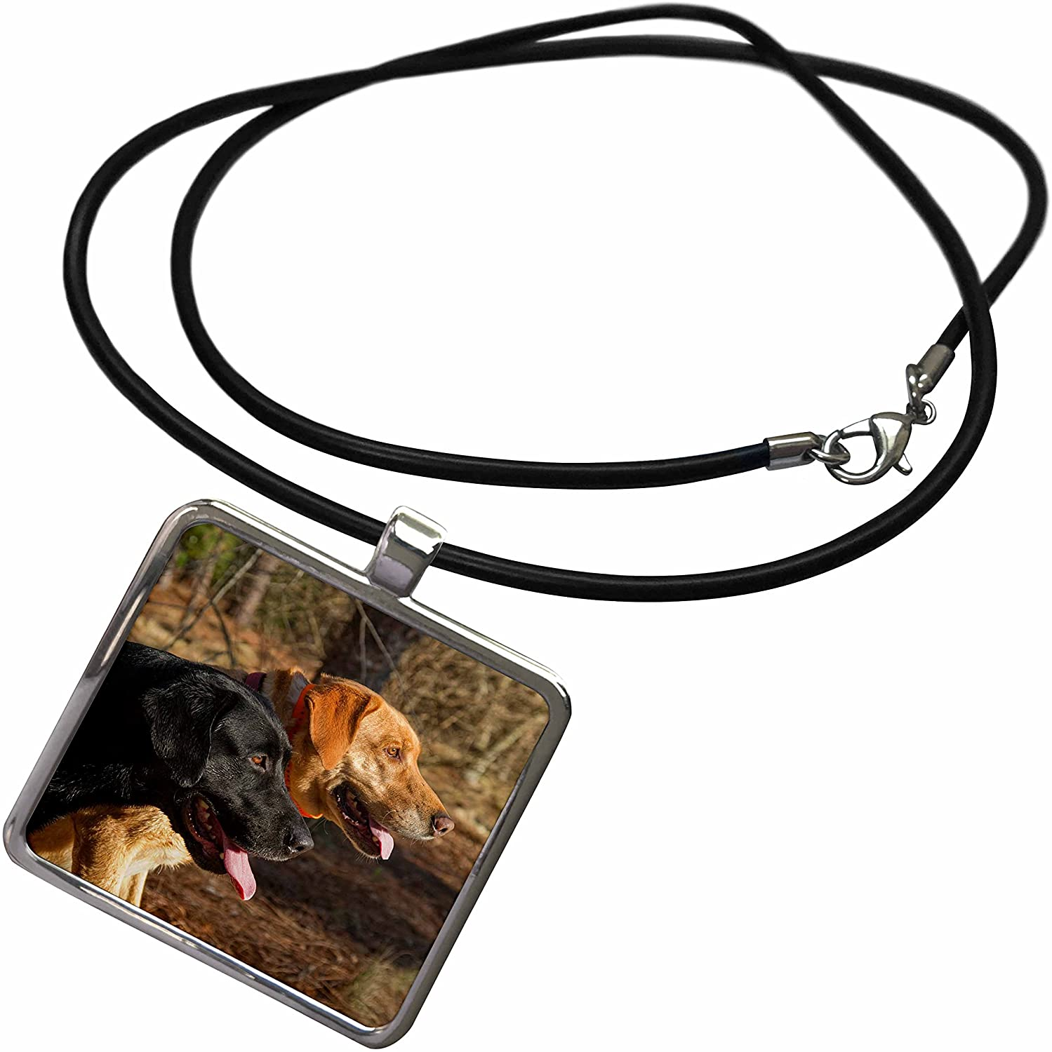 3dRose Susan Kjellsen Photography - Dogs - One Black and one Yellow Labrador Retriever - Necklace with Rectangle Pendant (ncl_280230)