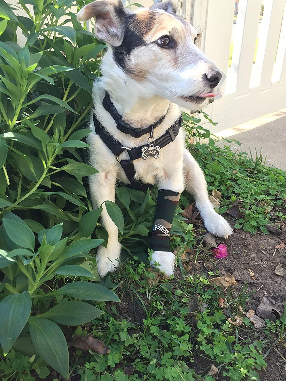 Canine Compression Sleeve (Camouflage, Medium