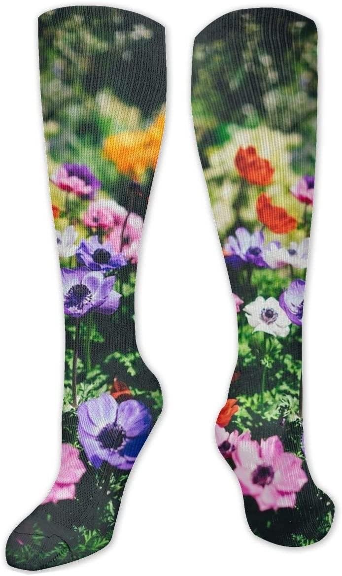 Compression Sock for Women & Men,Bloom Blossom Field CasualLongKneeHighTubeSocksforRunnning,SoccerAthleticSports,Travel-50cm