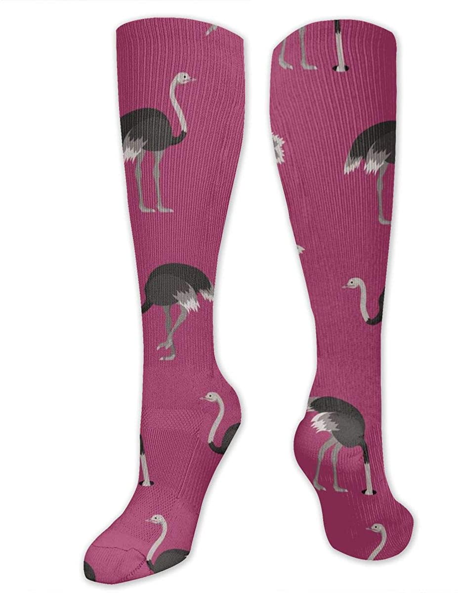 Cartoon Ostrich Pattern Athletic Socks Thigh Stockings Over Knee Leg High Socks