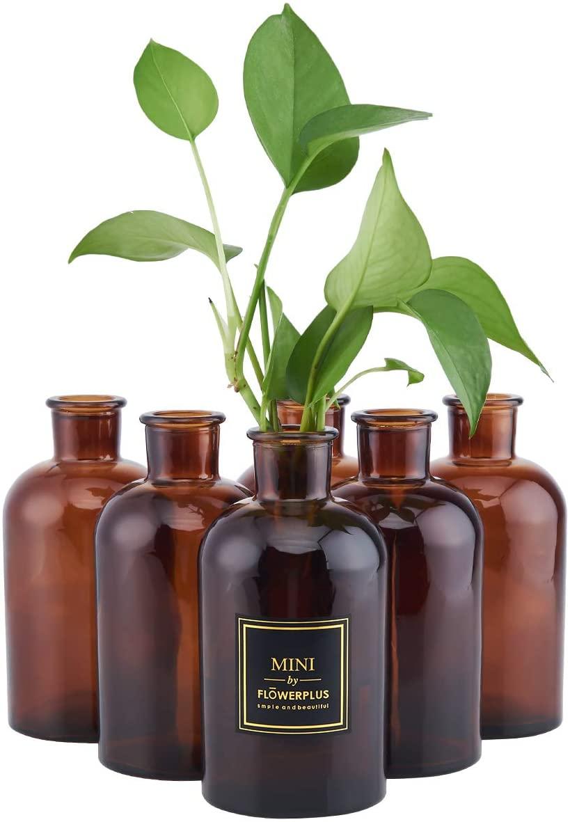HUAJING HOA Kinh Bud Vase, Amber Vintage Glass Vase, 6 Vases Glass Set, Medicine Bottle Vase for Flowers