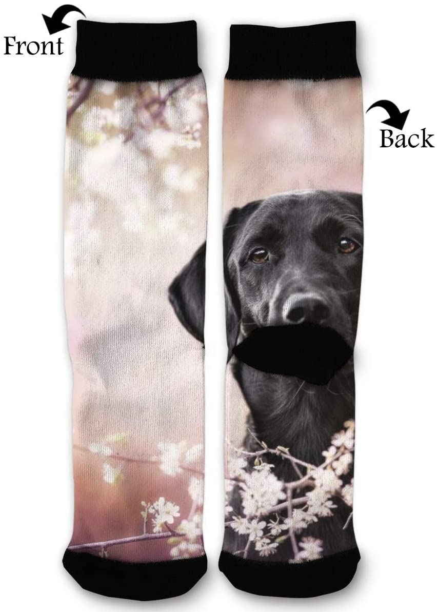 NRIEG Black Dog and Flower High Ankle Sock Men Women All Season Soft Cotton Breathable Printed Sport Compression Socks