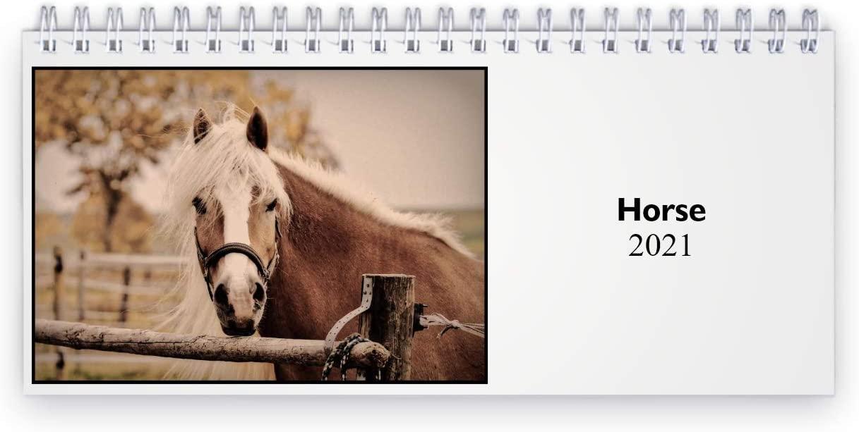 Horse 2021 Desk Calendar