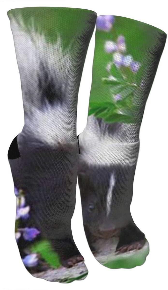 ~ Baby Skunks As Pets Knee High Graduated Compression Socks for Men Women - Best Medical, Nursing,Running & Fitness Socks with Moisture Wicking