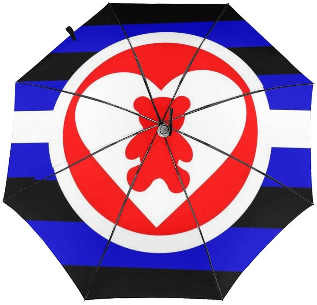 Speed FQ DDLG Pride Flag Folding Umbrella Travel Fashion Automatic Umbrella