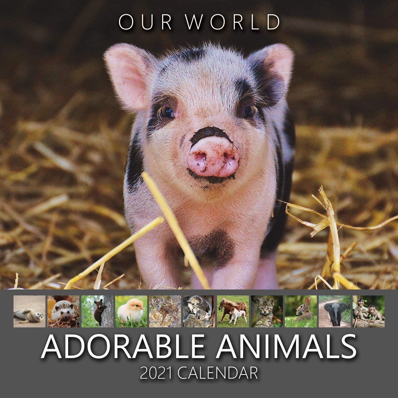 Our World: Adorable Animal 2021 Animal Nature Wall Calendar