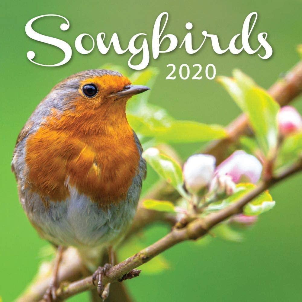 Turner Licensing, Songbirds Mini Wall Calendar 2020
