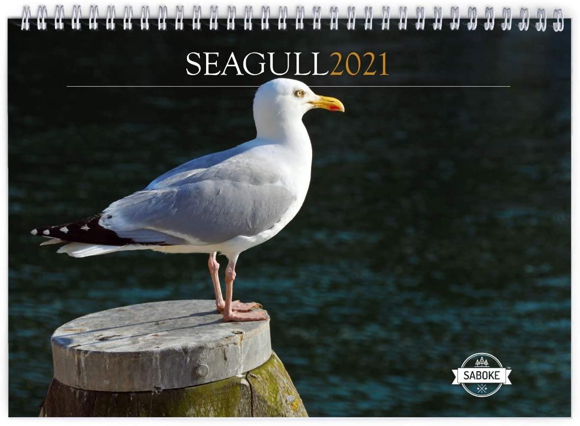 Seagull 2021 Wall Calendar