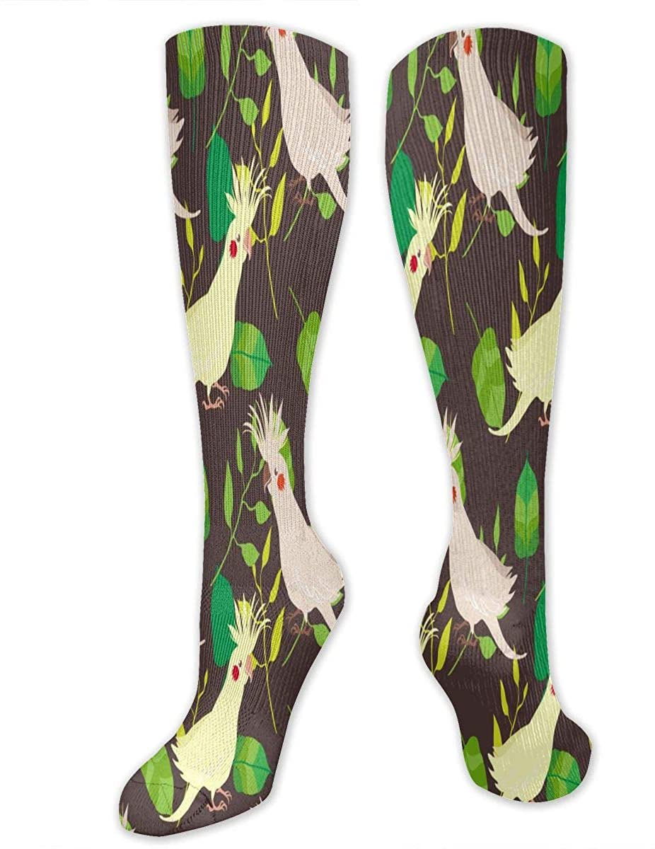 Cockatoos And Leafs Athletic Socks Thigh Stockings Over Knee Leg High Socks