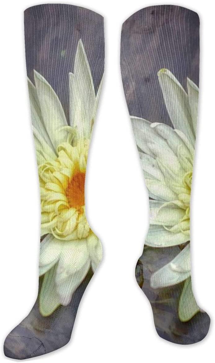 Compression Sock for Women & Men,Aquatic Plant Flower Leaf CasualLongKneeHighTubeSocksforRunnning,SoccerAthleticSports,Travel-50cm