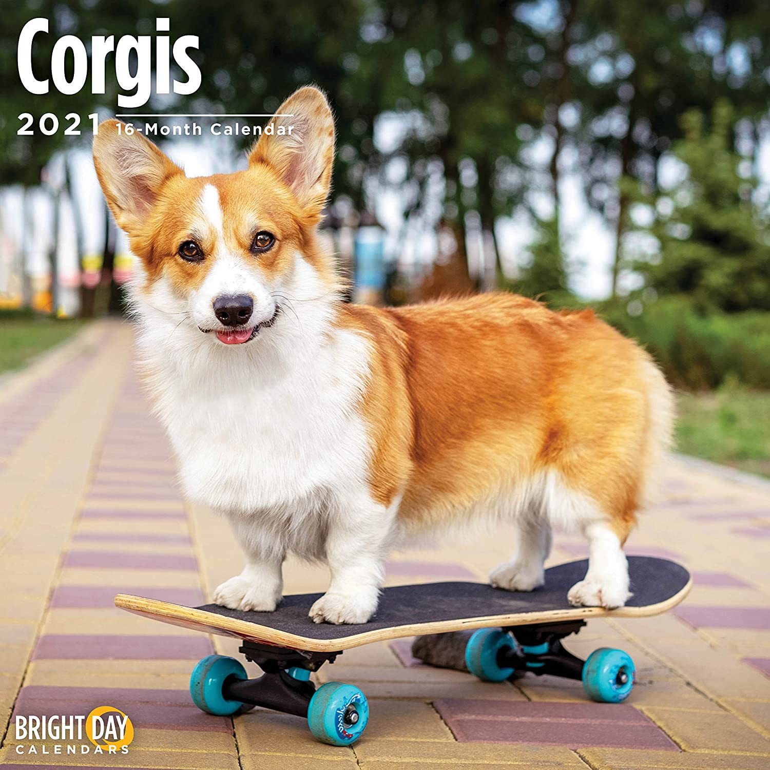 2021 Corgis Wall Calendar by Bright Day, 12 x 12 Inch, Cute Dog Puppy