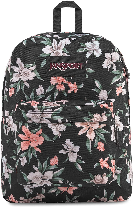 JanSport Ashbury 15 Inch Laptop Backpack - Comfortable School Pack, Grey Vintage Iris