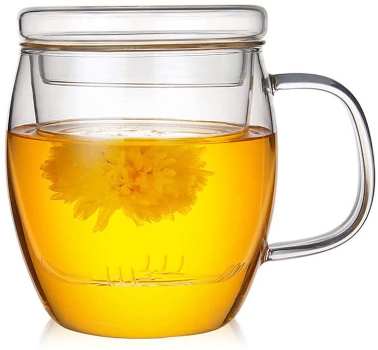 17 Oz Glass Teapot with Infuser Loose Leaf Tea Maker High Borosilicate Glass Mug Tea Cup with Lid