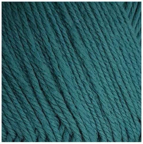 Russian Best Yarn Pechorskaya PT Elegant 100% Merino Wool 100 g 250 m in Stock, Typhoon