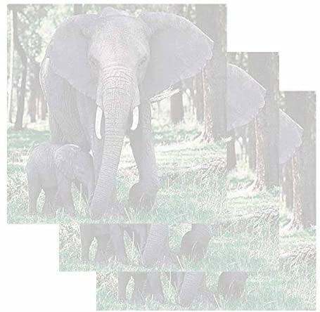 Elephant and Baby Sticky Notes - Set of 3 - Wildlife Animal Theme Design - Stationery Gift - Paper Memo Pad - Office Business School Supplies